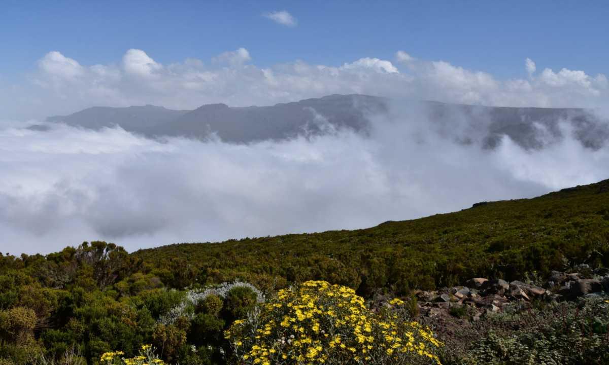 Bale mountains pic 3