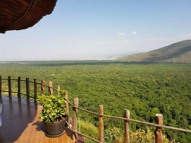 BRI_5_TOM_SAVAGE_ALL_paradise-lodge-view