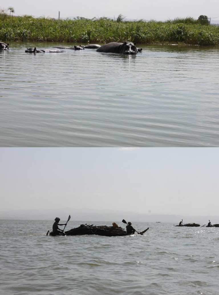 Bahir-Dar-Lake-Tana-Collage