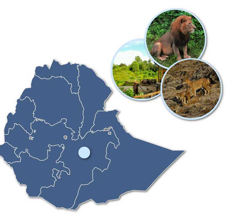 Bale-mountains-in-map