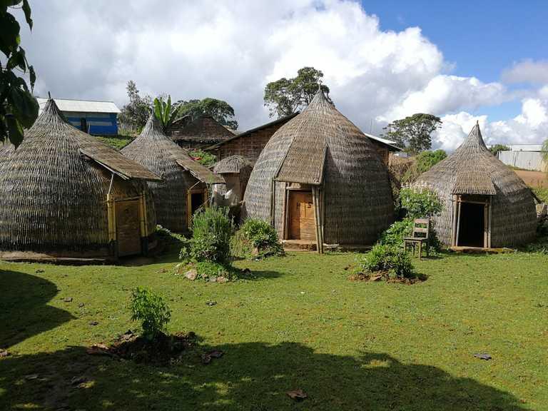 Harenna-Cultural-Lodge