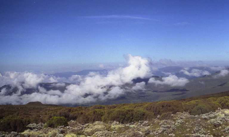 Discover the Bale Mountains